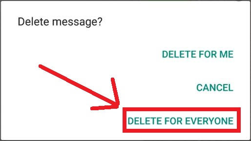 delete-whatsapp-message-for-everyone-within-time-limit